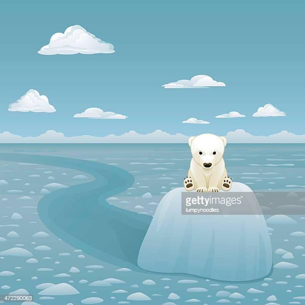 ilustraciones, imágenes clip art, dibujos animados e iconos de stock de bebé osos polares en bloques de glaciar - oso polar