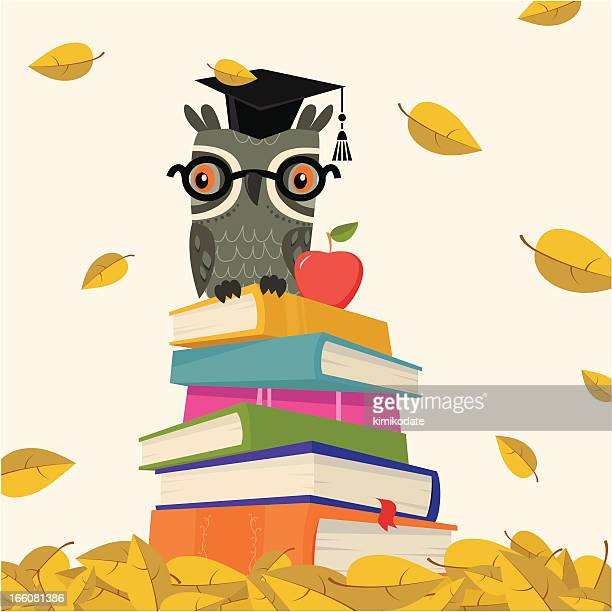 back to school - stack of book with owl - owl stock illustrations, clip art, cartoons, & icons