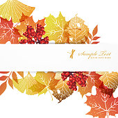 background of autumn colors leaves