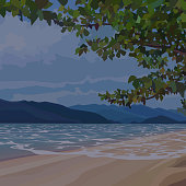 background of evening sandy beach under the canopy of trees