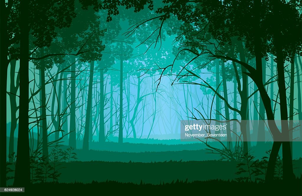 Background of landscape with deep forest.