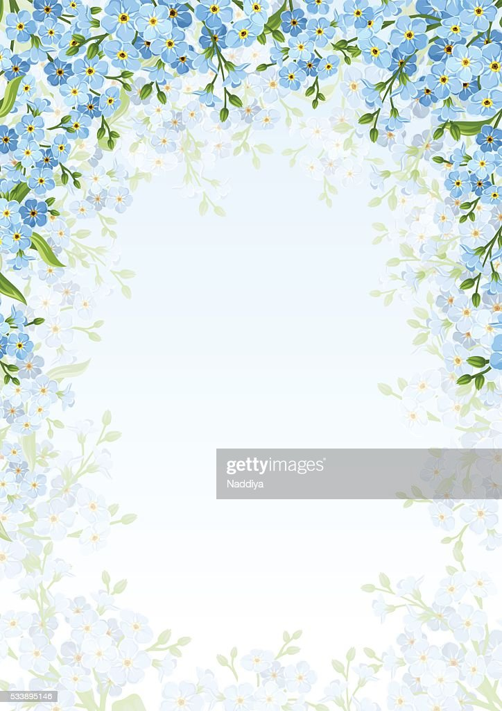 Background with blue forget-me-not flowers. Vector illustration.