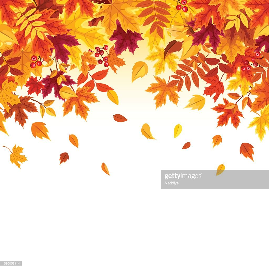 Background with colorful falling autumn leaves. Vector illustration.