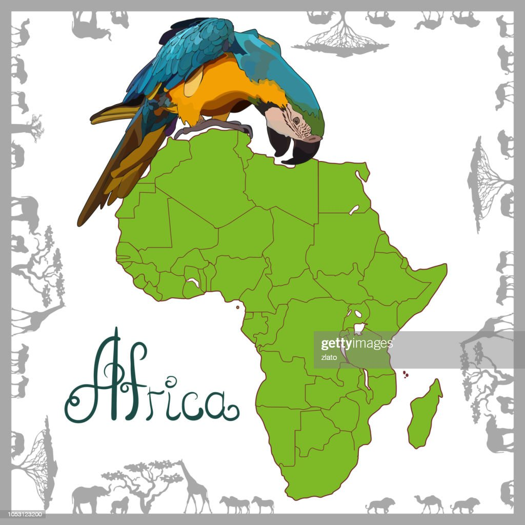 Background with continent of Africa and parrot