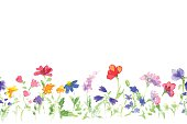 Background with drawing of watercolor wildflowers