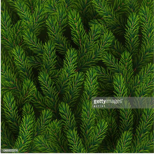 background with fir tree - pine wood material stock illustrations, clip art, cartoons, & icons