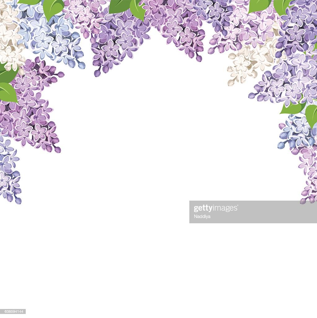 Background with lilac flowers. Vector illustration.