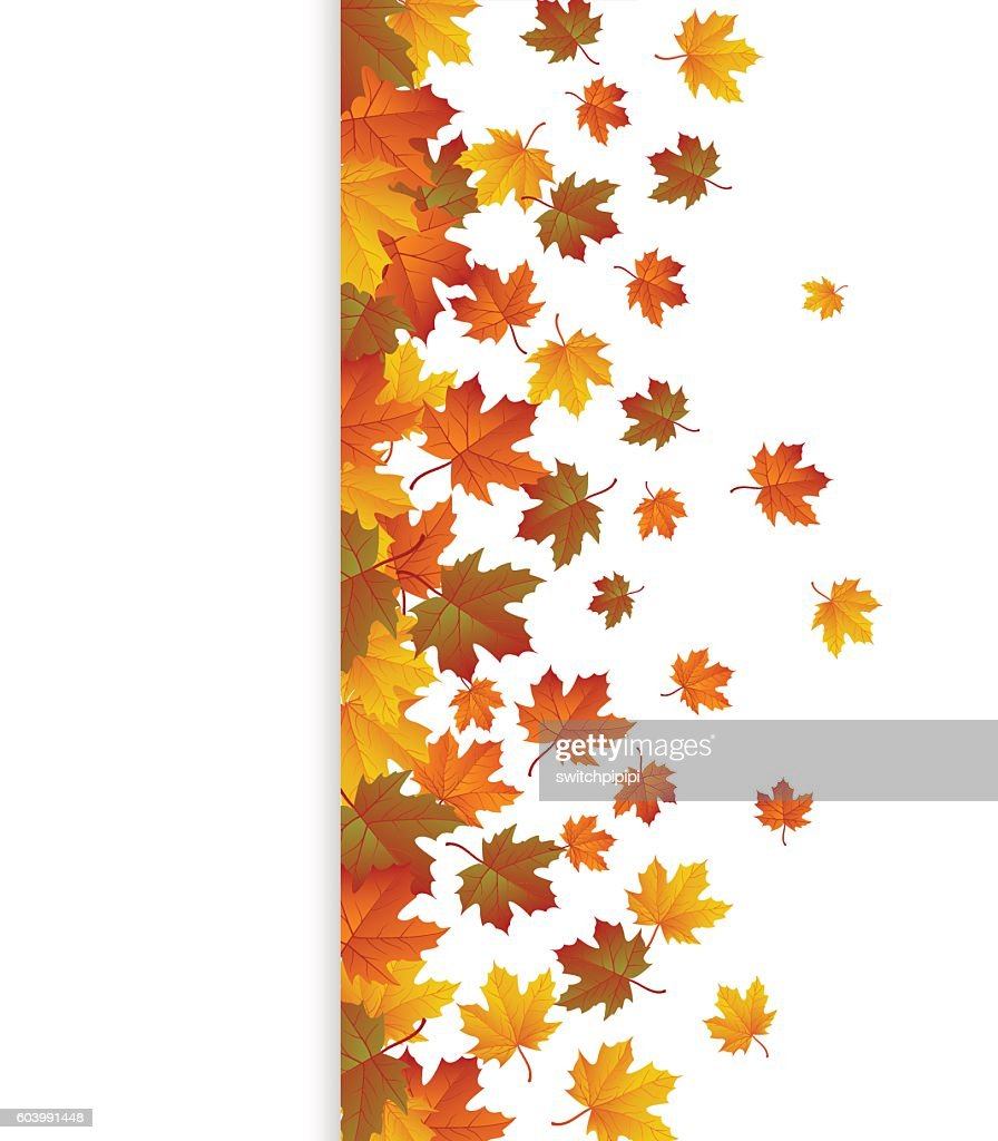 Background with maple autumn leaves. Vector