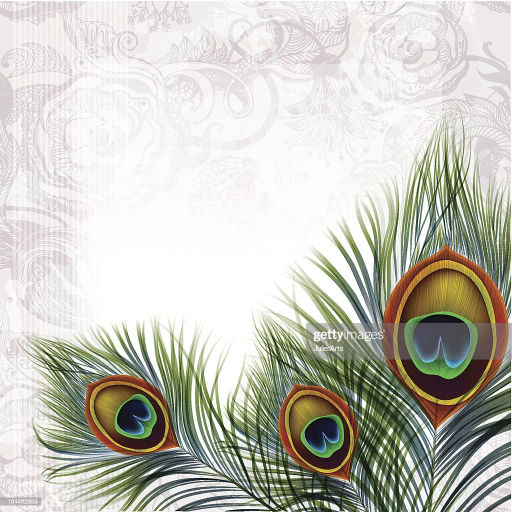 Background With Peacock Feathers in EPS10