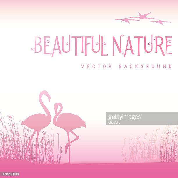 background with pink flamingos - flamingo stock illustrations, clip art, cartoons, & icons