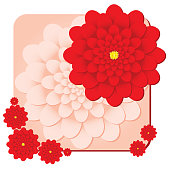 Background with red dahlias flower