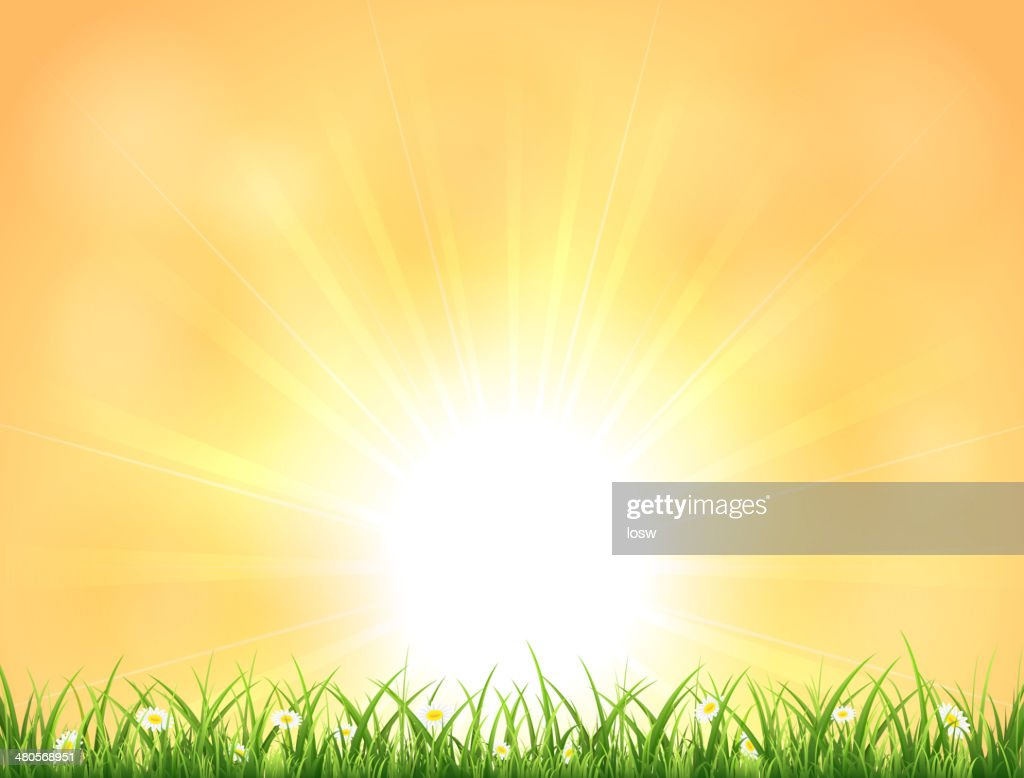 Background with Sun and grass