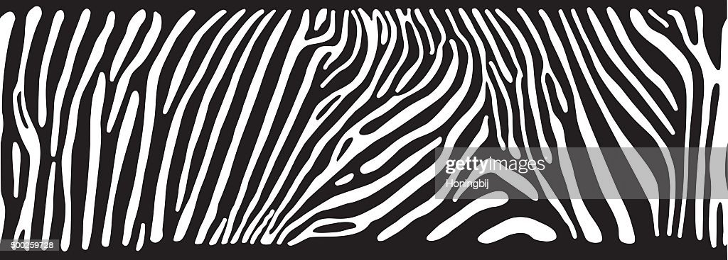 Background with Zebra skin