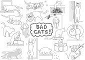 bad cats set