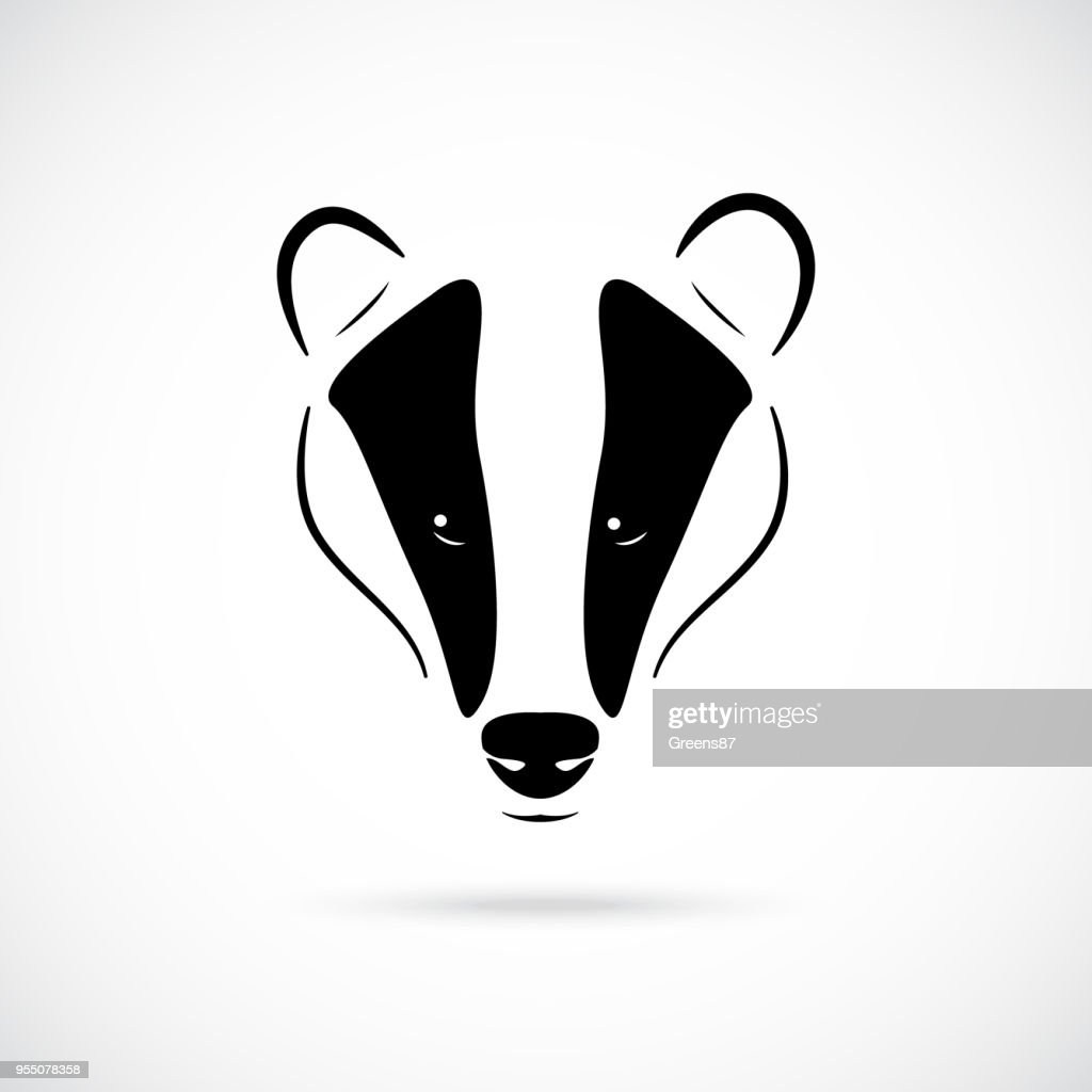 Badger head vector illustration in black, isolated on white background. Icon for retro hipster logos, emblems, badges, labels template and t-shirt design element.