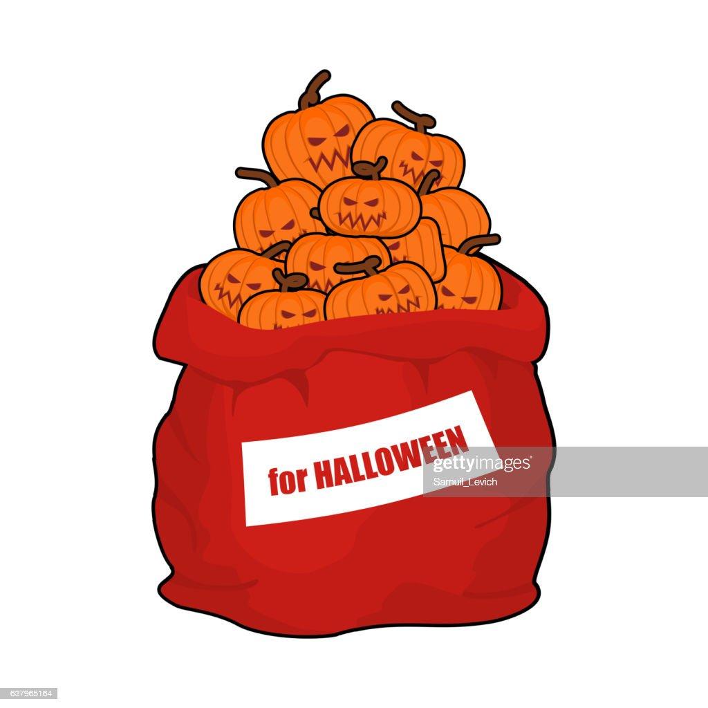 Bag scary pumpkins for Halloween. Full sack of vegetables
