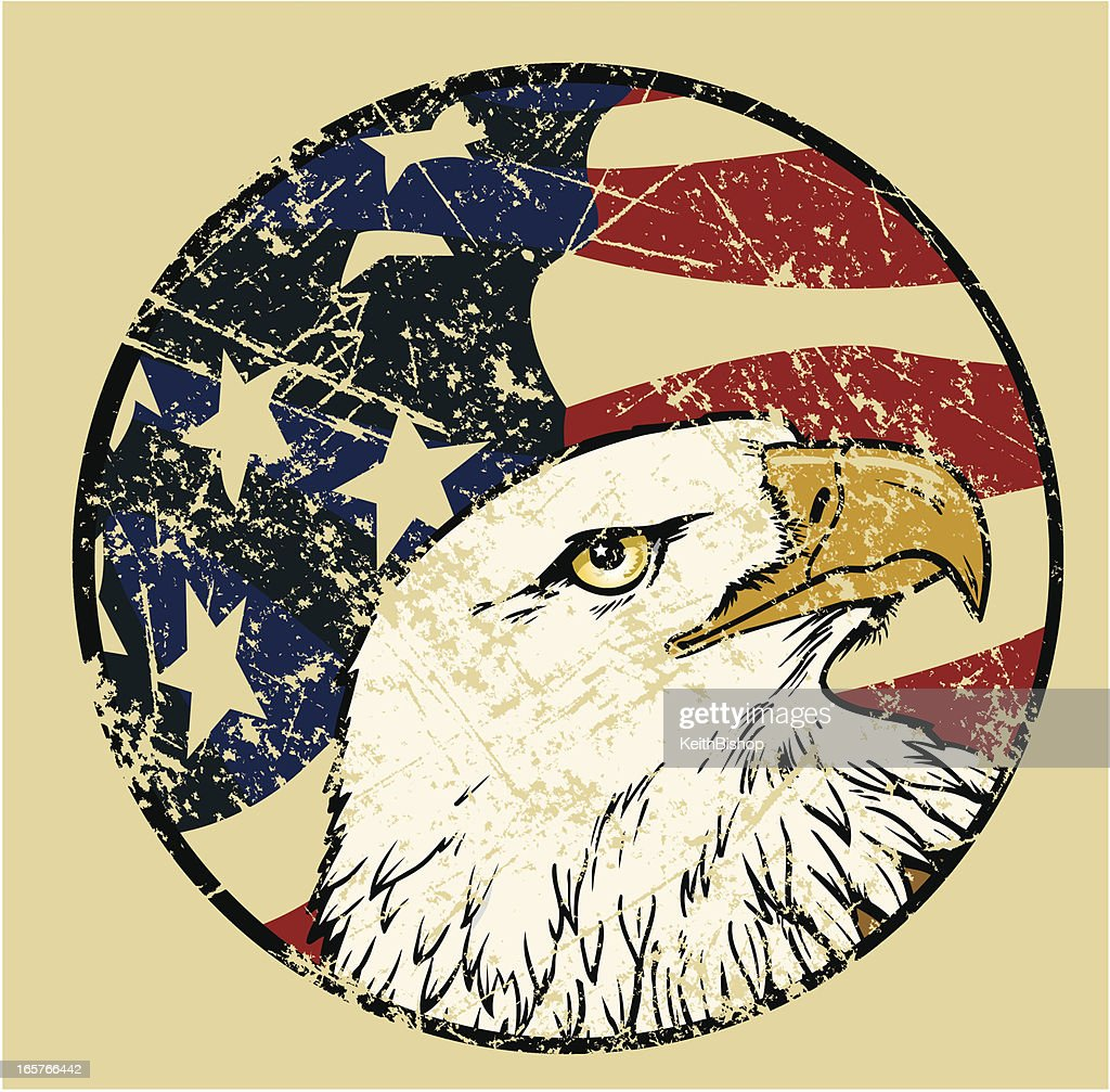 Bald Eagle Bird with American Flag Weathered USA Background