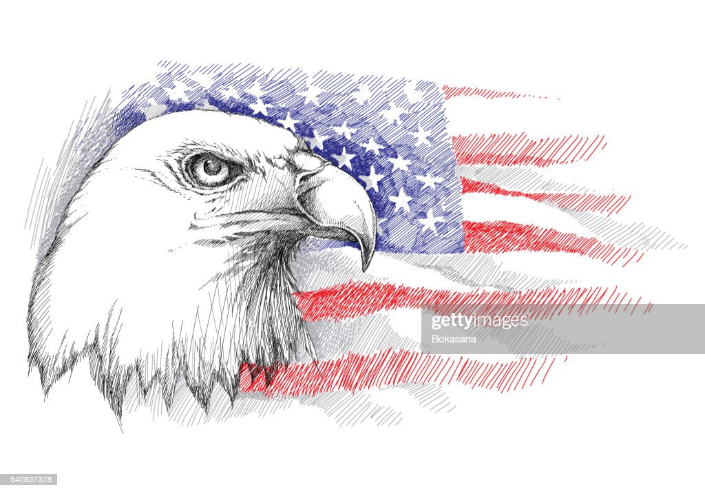 Bald eagle head on the background with American flag isolated.