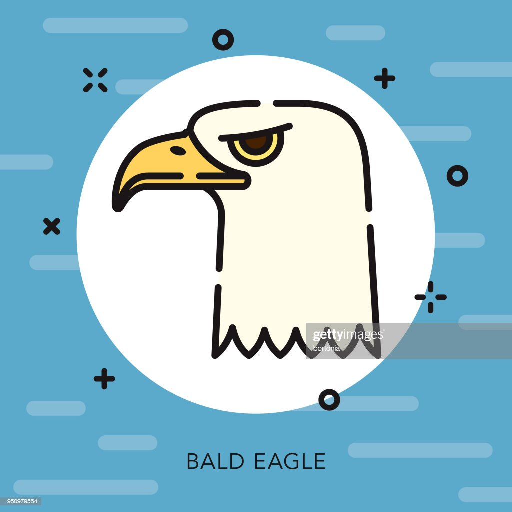 Bald Eagle Open Outline Usa Icon stock illustration - Getty