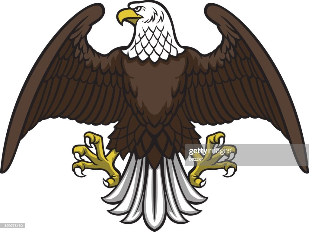 bald eagle spread the wing
