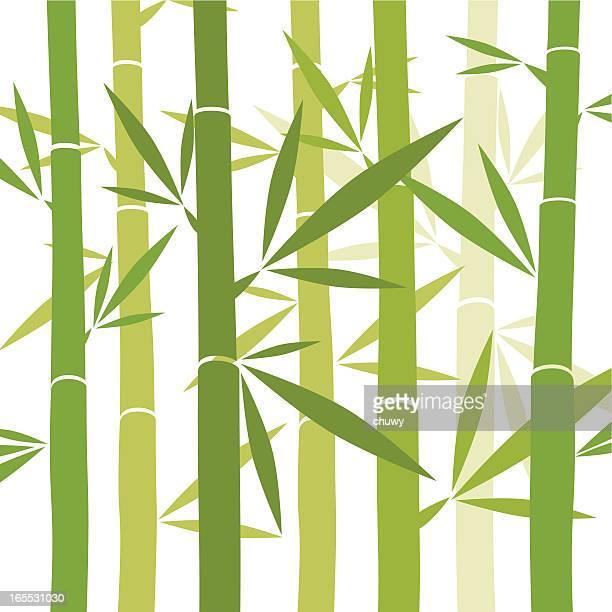 ilustraciones, imágenes clip art, dibujos animados e iconos de stock de fondo de bambú - chuwy