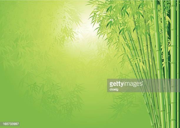 竹の背景 - 竹点のイラスト素材/クリップアート素材/マンガ素材/アイコン素材