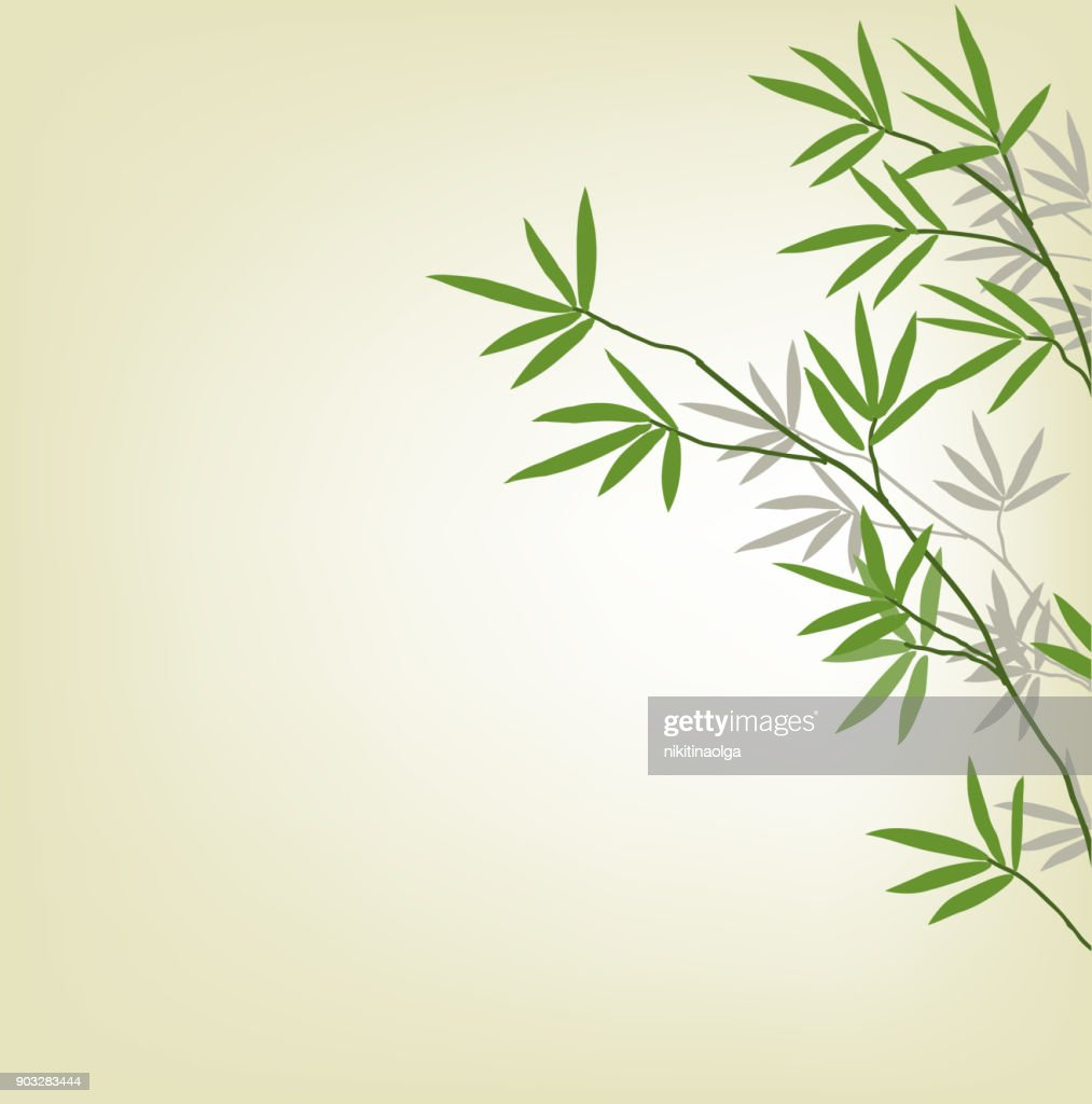 Bamboo branches, design element. Illustration whith copy space