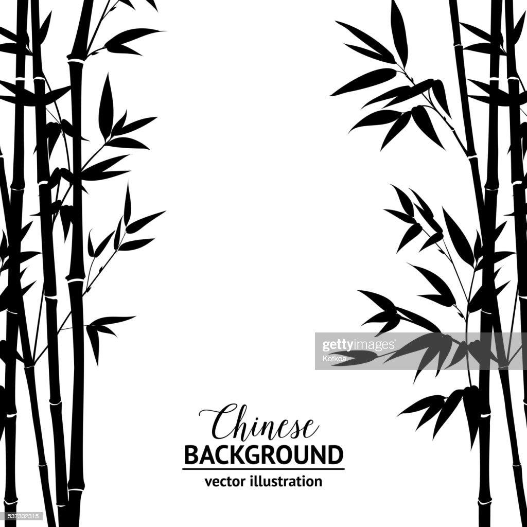 Bamboo bush over white