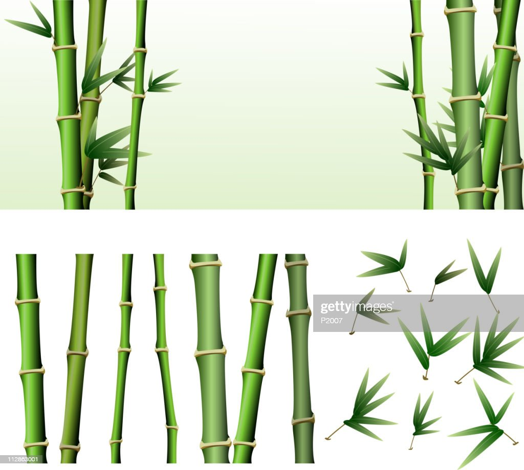Bamboo Design Elements