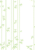 Bamboo forest isolated on the white background