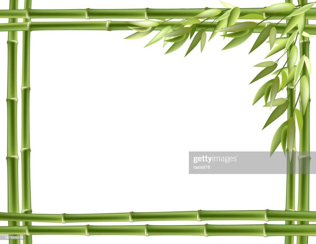 Bamboo frame. Vector background