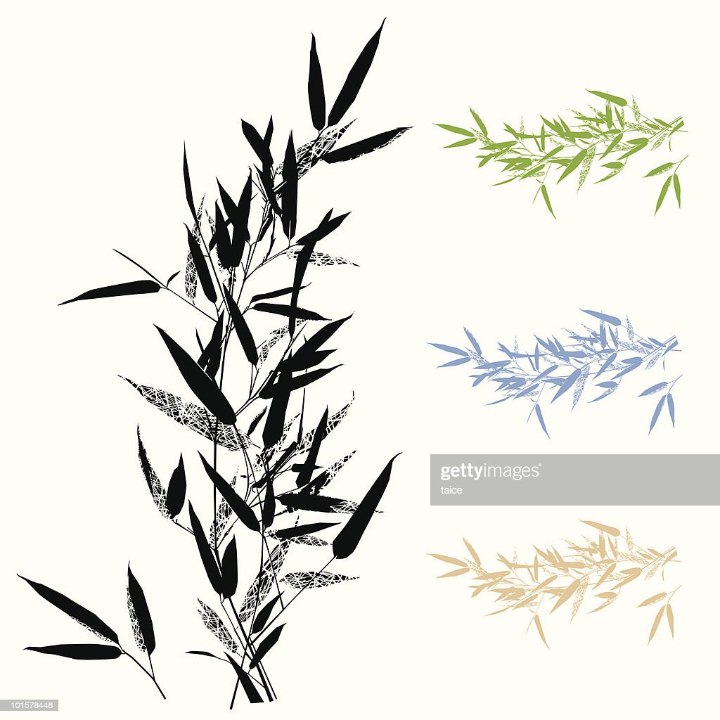 Bamboo Leafs Branch -Design Element