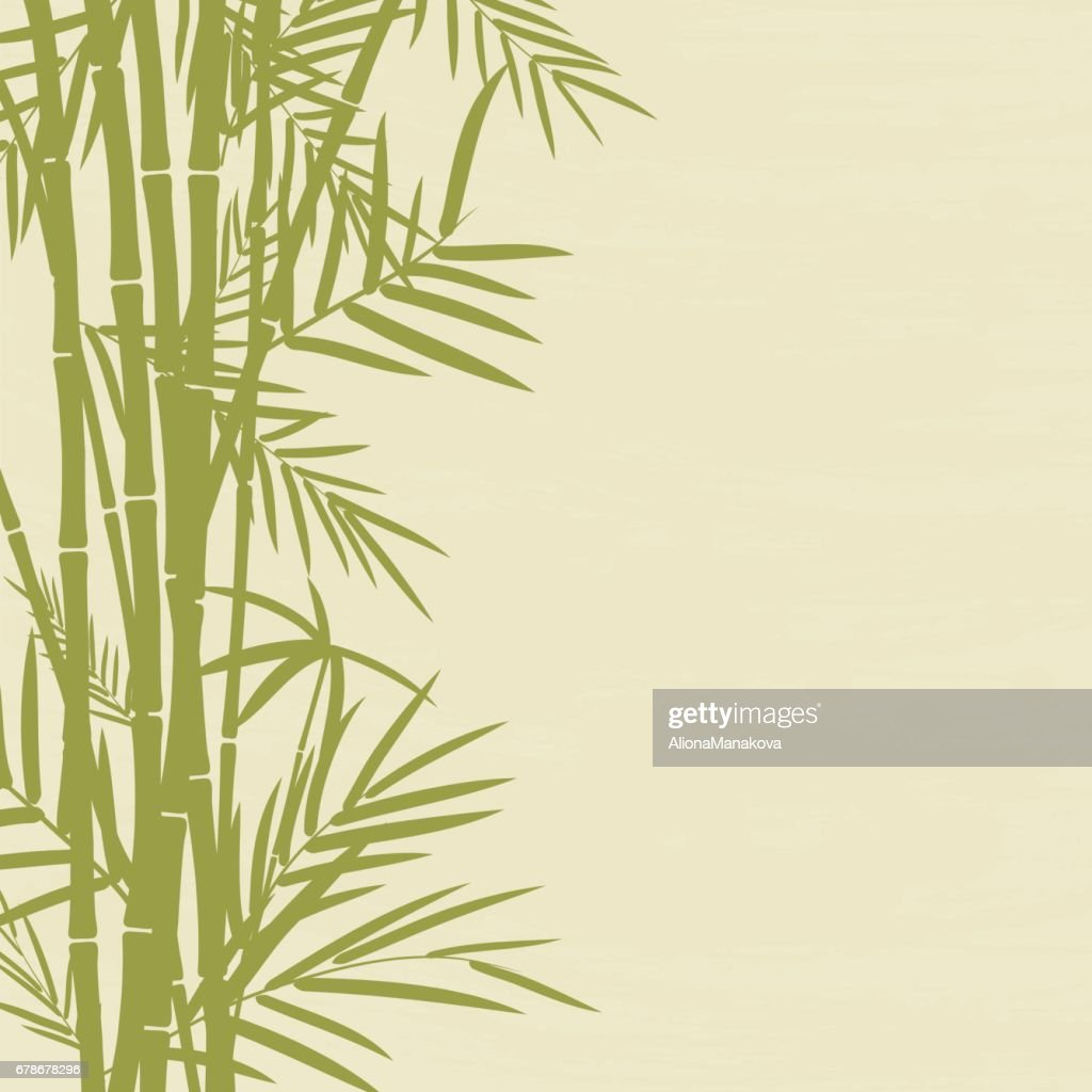 Bamboo tree with leaves with space for your text.