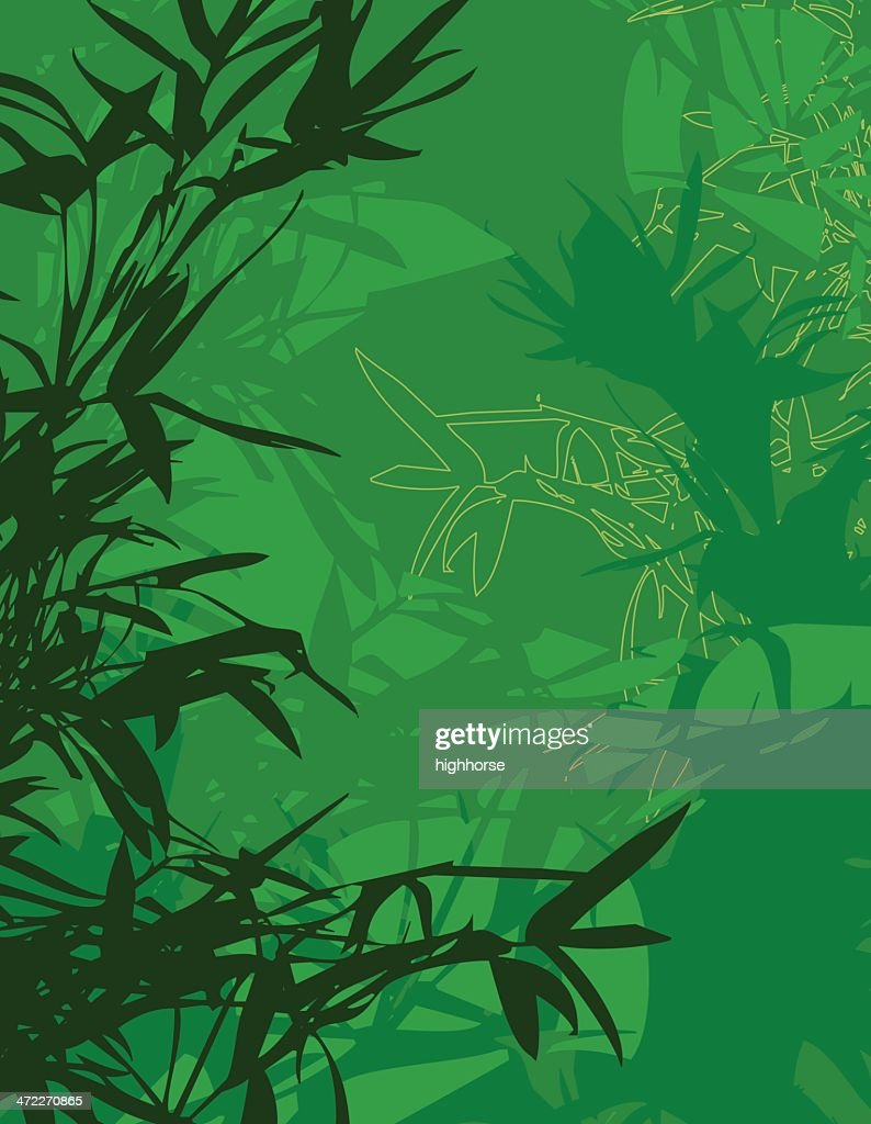 Bambus Vektorgrafik Getty Images