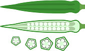 Bamiya or okra edible eastern fresh healthy food pods whole flat lay icons