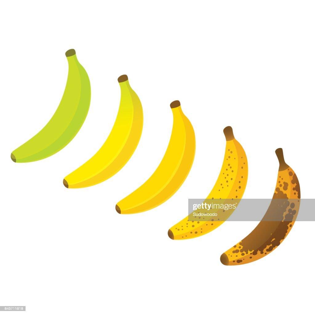 Banana ripeness chart