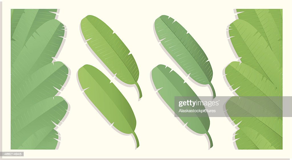 Bananaleafs (varios).