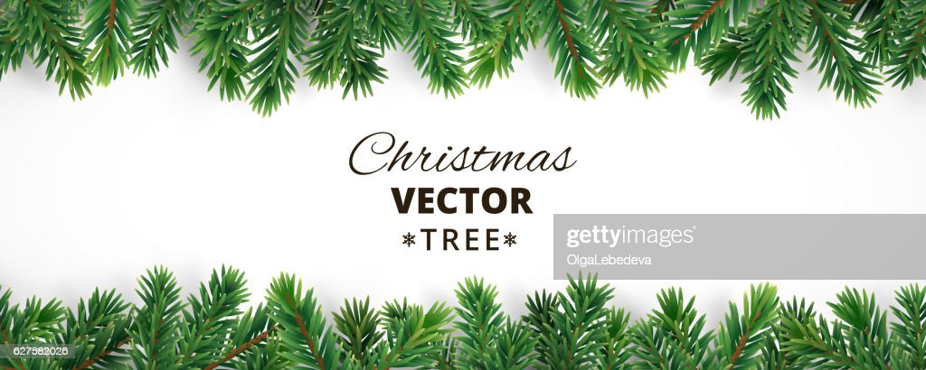 Banner with vector christmas tree branches and space for text.