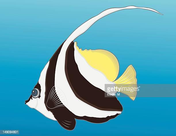 Bannerfish / Poisson-cocher
