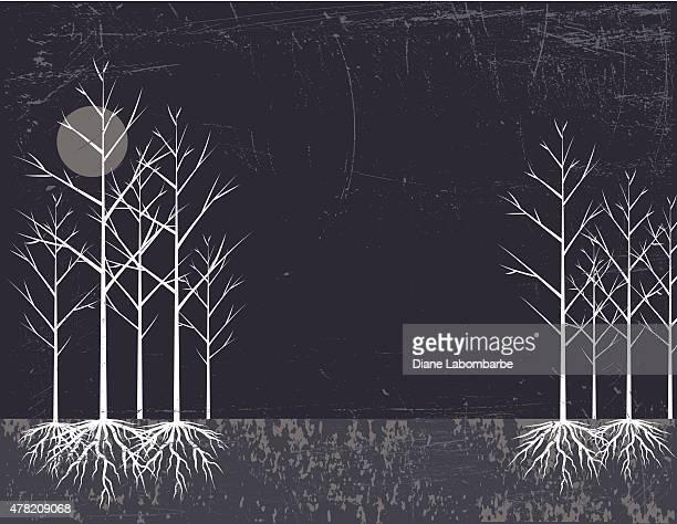 Nu arbre avec racines et de la lune