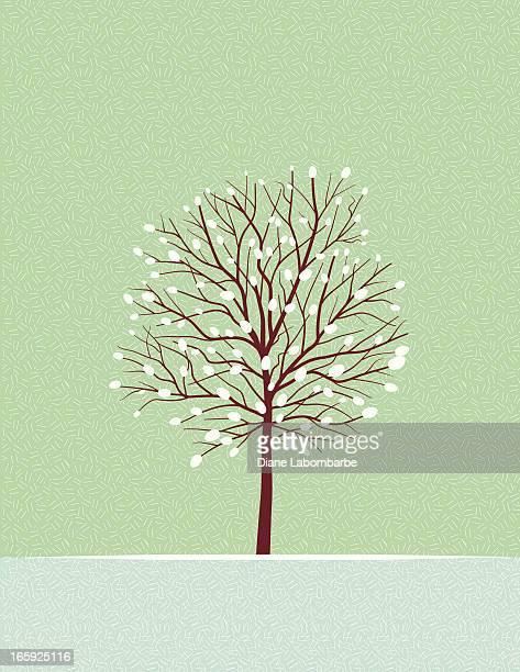 Nu arbre d'hiver avec la neige