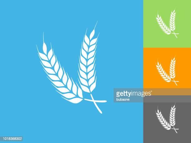 barley flat icon on blue background - barley stock illustrations