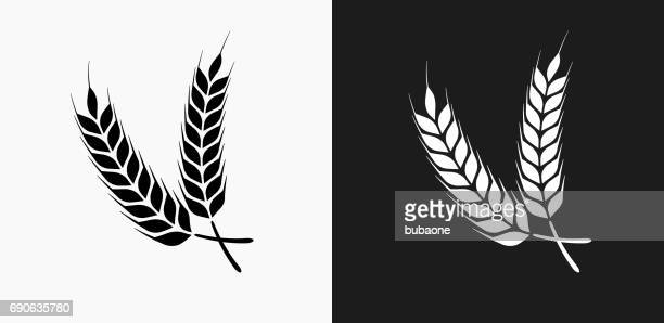 barley icon on black and white vector backgrounds - barley stock illustrations
