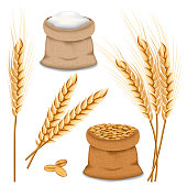 Barley spikelets mockup set, realistic style