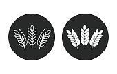 Barley - vector icon.