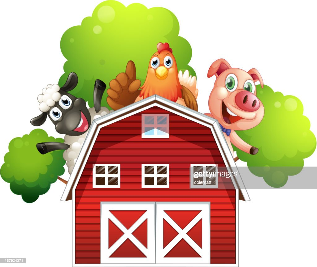 barn with animals at the rooftop