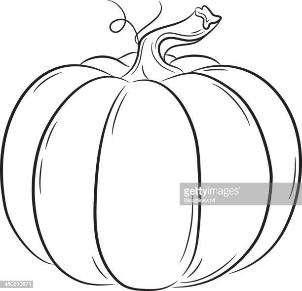 basic linework pumpkin - plant stem stock illustrations, clip art, cartoons, & icons