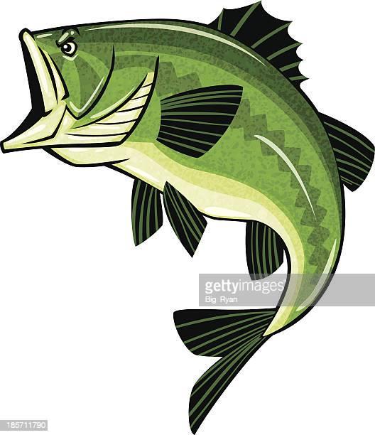 bass logo - bass fishing stock illustrations