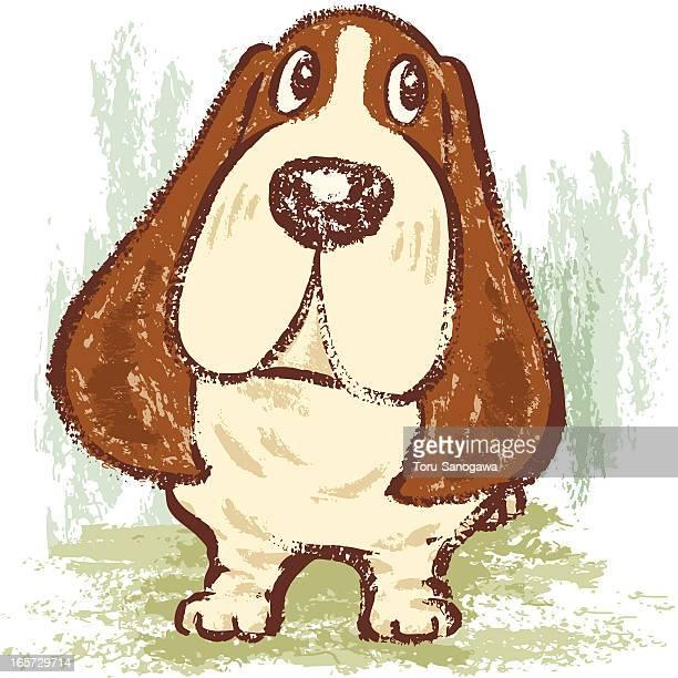 basset hound standing - basset hound stock illustrations