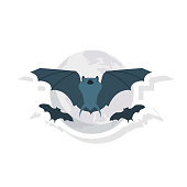 bat  fly  animal